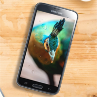 Samsung-Galaxy-S5-Plus-805