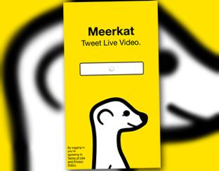 Meerkat-app